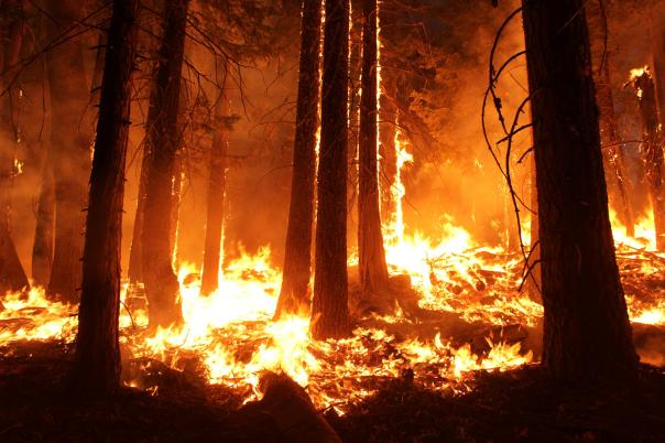 fire-slideshow1-main.jpg